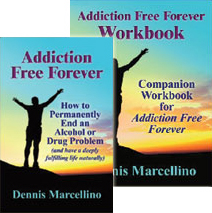alcohol recovery workbook